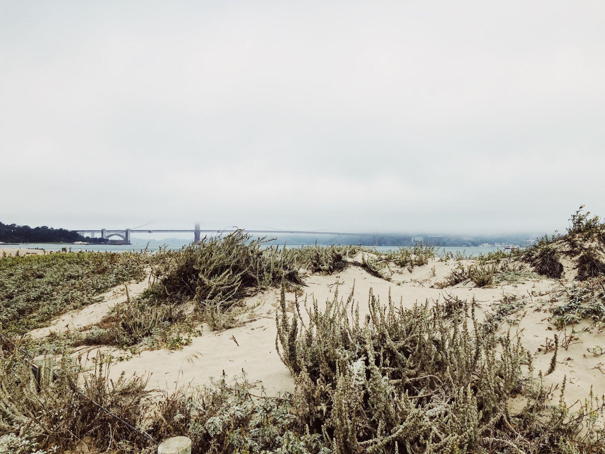 Die Marina/ Chestnut Street Gegend in San Francisco - Nowshine ü40 Reiseblog - Golden Gate Bridge Promenade
