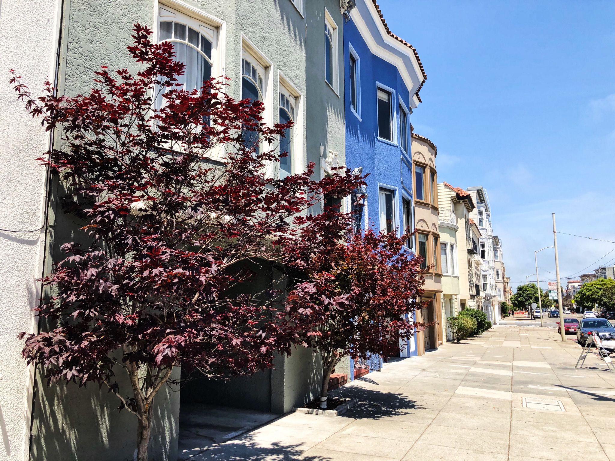 Die Marina/ Chestnut Street Gegend in San Francisco - Nowshine ü40 Reiseblog - Häuser